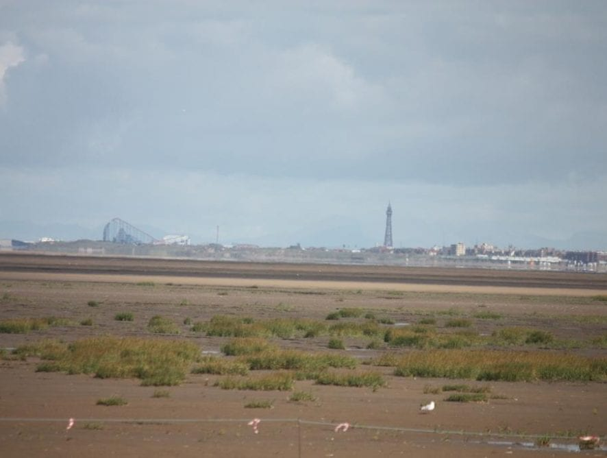 View of Blackpool from Southport by Andrea Jones